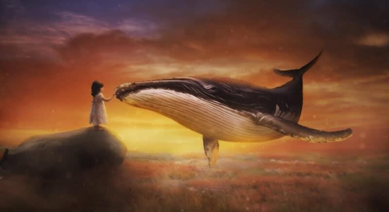 vaal laps kivi taevas maa pai
