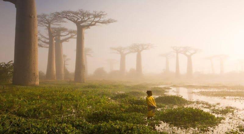 Mets, vesi, naine, muutuvad situatsioonid